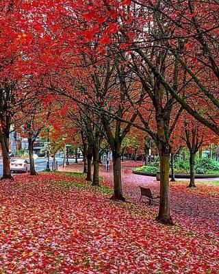 Photograph - Fall Fantasy In Portlandia by Michael Oceanofwisdom Bidwell