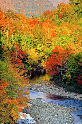 Photograph - Fall Foliage Barchois River, Cabot by Barrett & Mackay
