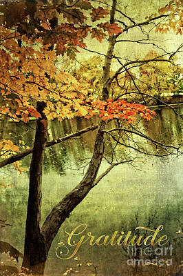 Photograph - Fall Foliage Gratitude Artwork by Anita Pollak