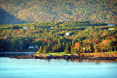 Photograph - Fall Foliage In Bar Harbor by Bill Swartwout Fine Art Photography