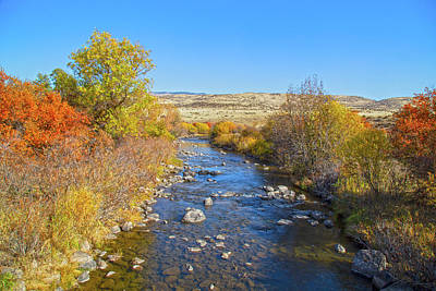 Photograph - Fall Foliage In Idaho by Dart and Suze Humeston