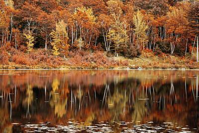Photograph - Fall Foliage Reflection In Jordan Pond, Maine by Mihai Andritoiu