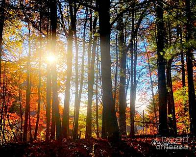 Photograph - Fall In Conn by MaryLee Parker