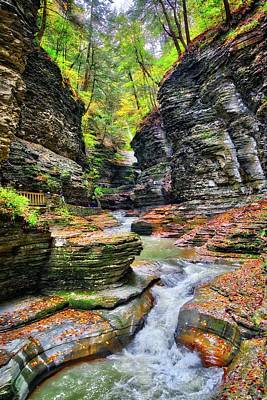 Photograph - Fall In The Gorge At Watkins Glen State Park - Finger Lakes, New York by Lynn Bauer