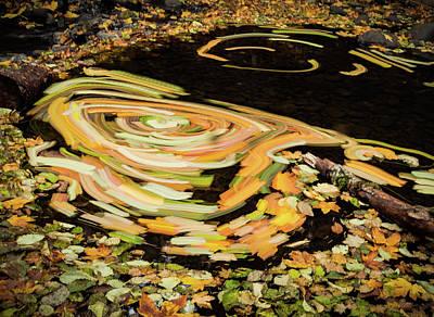 Photograph - Fall Leaf Swirl by Jean Noren