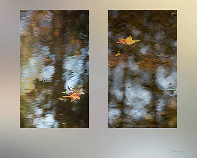 Photograph - Fall Leaves On A Pond by Karen Rispin