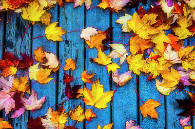 Photograph - Fall Leaves On Wooden Deck by Garry Gay