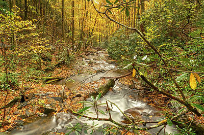 Photograph - Fall Mountain River by Meta Gatschenberger