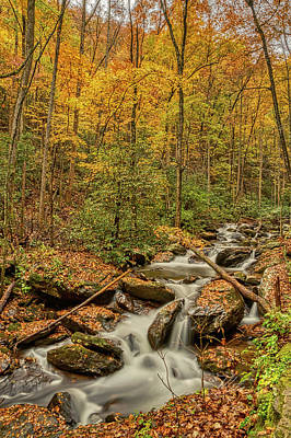 Photograph - Fall Mountain Stream by Meta Gatschenberger