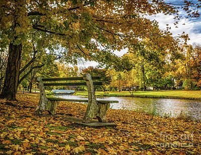 Photograph - Fall On Lake Drive by Nick Zelinsky