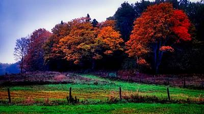 Photograph - Fall Pasture by Bryan Smith