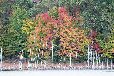 Photograph - Fall Pickerel Lake 10161501 by Rick Veldman