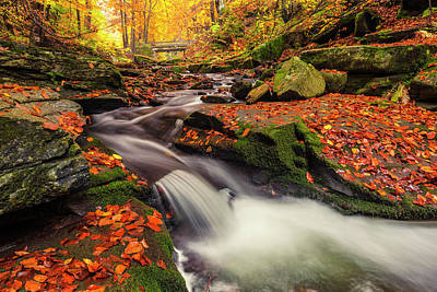 Mountain Royalty-Free and Rights-Managed Images - Fall Power by Evgeni Dinev