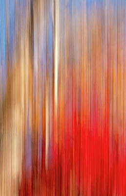 Photograph - Fall Scene Abstract by Carolyn Derstine