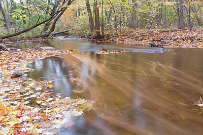 Photograph - Fall Stream 10161501 by Rick Veldman