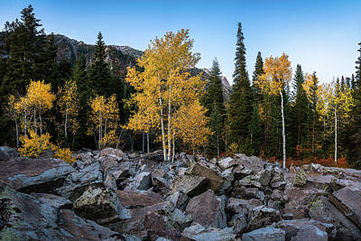 Photograph - Fall Trees In The Rocks by James Udall