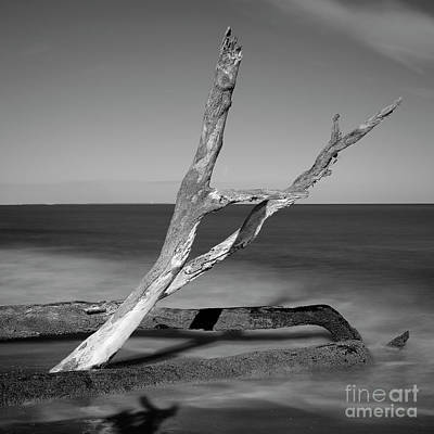Photograph - Falling Into The Sea by Patrick M Lynch