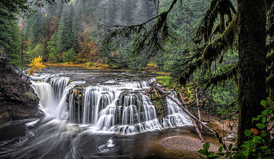 Photograph - Falls On The Lewis River by Wes and Dotty Weber