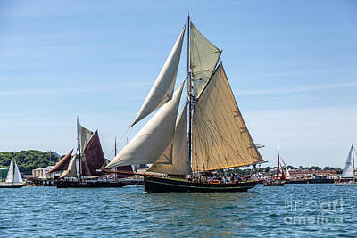 Photograph - Falmouth Classics Leaving Harbour by Brian Roscorla