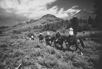 Photograph - Family Vacationers Riding Pack Mules Int by Eliot Elisofon