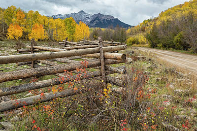 Photograph - Famous Fence by Denise Bush