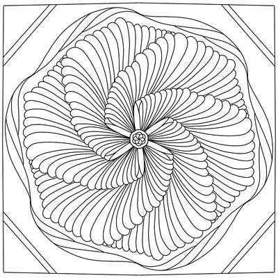 Drawing - Fan Out by Kathy Sheeran
