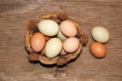 Photograph - Farm Fresh Eggs In Wicker Basket by Sheila Brown