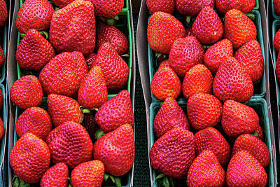 Royalty-Free and Rights-Managed Images - Farm Fresh Strawberries by Peter Tellone