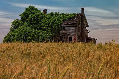 Photograph - Farmhouse by Thomas Hall