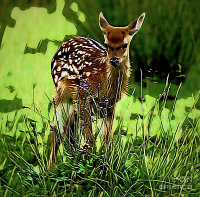 Painting - Fawn A18-68 by Ray Shrewsberry