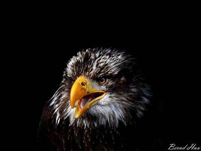Photograph - Fearless by Bernd Hau