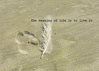 Photograph - Feather Print Quote by JAMART Photography