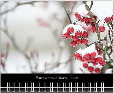 Photograph - February 2019 Classic Calendar Preview by Joni Eskridge