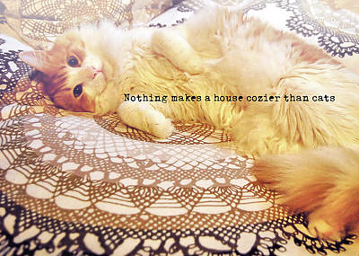 Photograph - Feline Art Quote by JAMART Photography