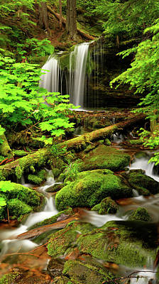 Photograph - Fern Falls Panoramic by Leland D Howard