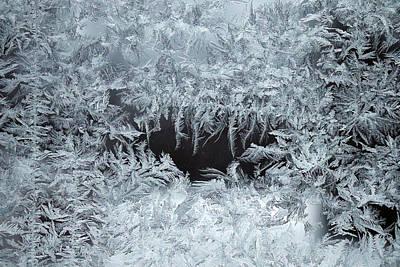 Photograph - Fern Frost On The Window by David T Wilkinson
