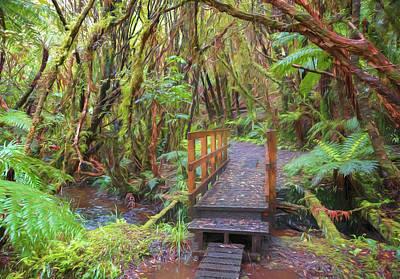Photograph - Fern Gully Stewart Island New Zealand Artistic by Joan Carroll