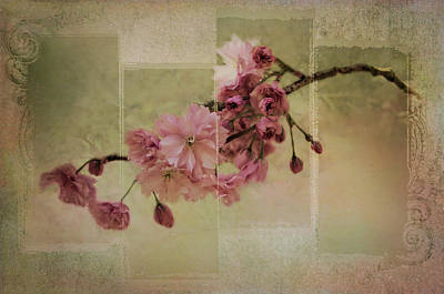 Digital Art - Romantic Blossoms 2 by Marilyn Wilson