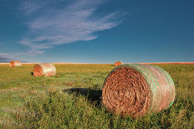 Photograph - Field Of Bales by Todd Klassy