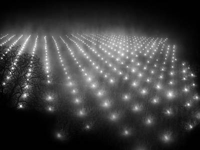 Photograph - Field Of Fires by London Express