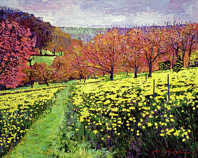 Impressionism Paintings - Fields of Golden Daffodils by David Lloyd Glover