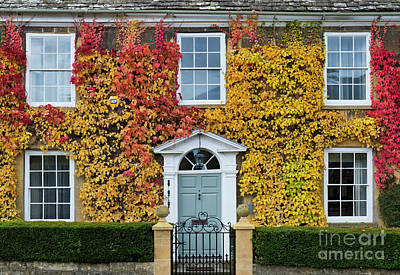 Photograph - Fiery Autumn Foliage In The Cotswolds by Tim Gainey