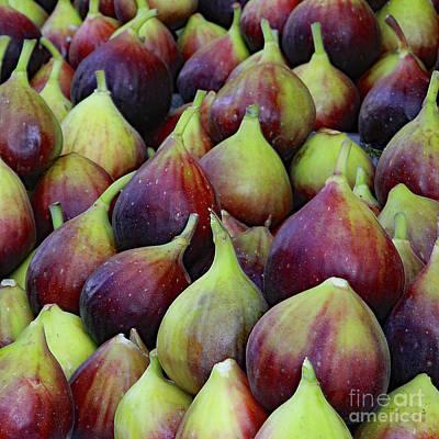 Photograph - Figs by PJ Boylan