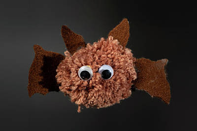 Fleetwood Mac - Figure of a brown bat made of wool and paper by a child by Stefan Rotter