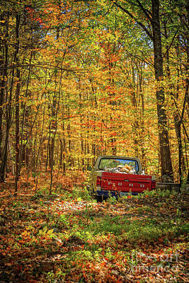 Photograph - Final Resting Place - Old Ford In The Forest by Edward Fielding