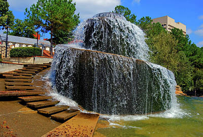 Photograph - Finlay Park Columbia South Carolina 21 by Joseph C Hinson Photography