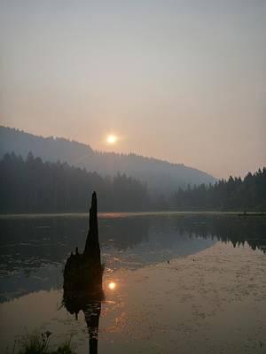 Sheep - Fire Season Sunrise by Pono Abreu
