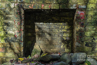 Abandoned Elkmont Wall Art - Photograph - Fireplace by Mike Eingle