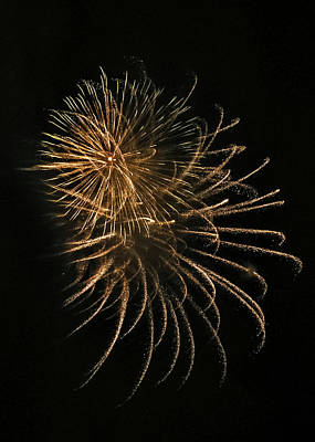 All You Need Is Love - Fireworks #20 by Alesia Kaye Stein
