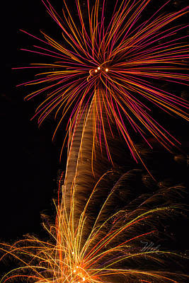 Photograph - Fireworks Palm Tree by Meta Gatschenberger